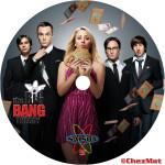 label the big bang theorySaison 5