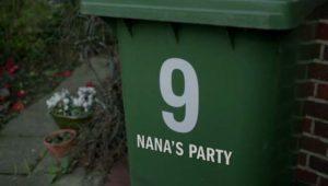 inside-n9-nanas-party